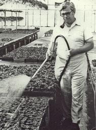 Robert Lind - Centerville Greenhouses, Inc.