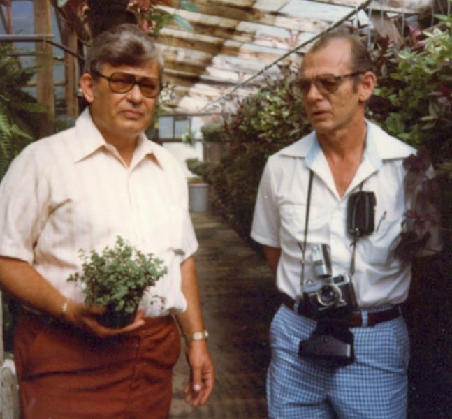 Bob Lind on European trip scoping out new plant varieties to bring back to the states - 1976.