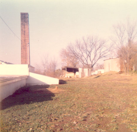 North side of Greenhouse after cleanup - 1973.