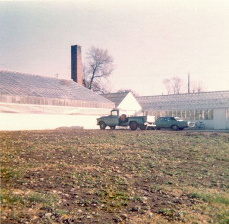 South side of Greenhouse after cleanup - 1973.