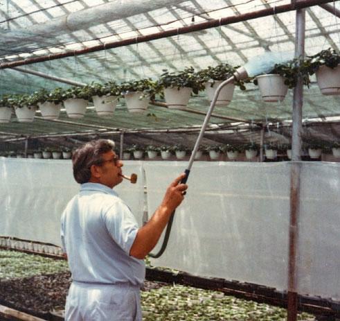 Bob Lind watering hanging baskets - 1977.