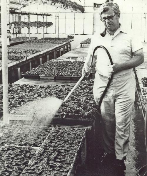 Bob Lind watering - 1978.