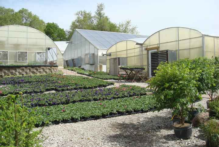 Centerville Greenhouses, Inc. - View from southwest.