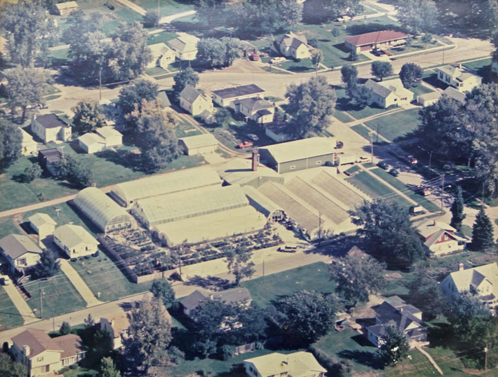 Aerial View of Centerville Greenhouses - 1980s.