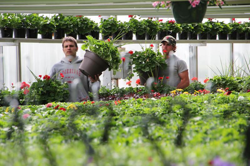 Pete & Alex Lind - Centerville Greenhouses -2012