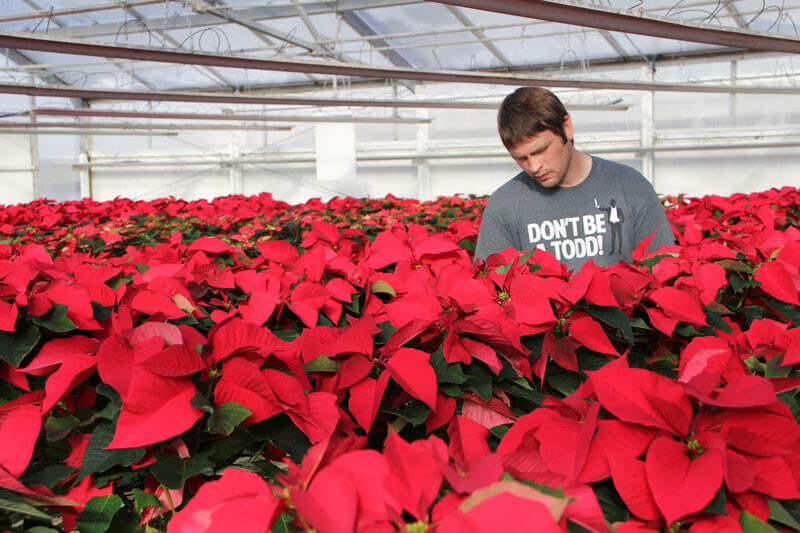 Pete Lind - Centerville Greenhouses