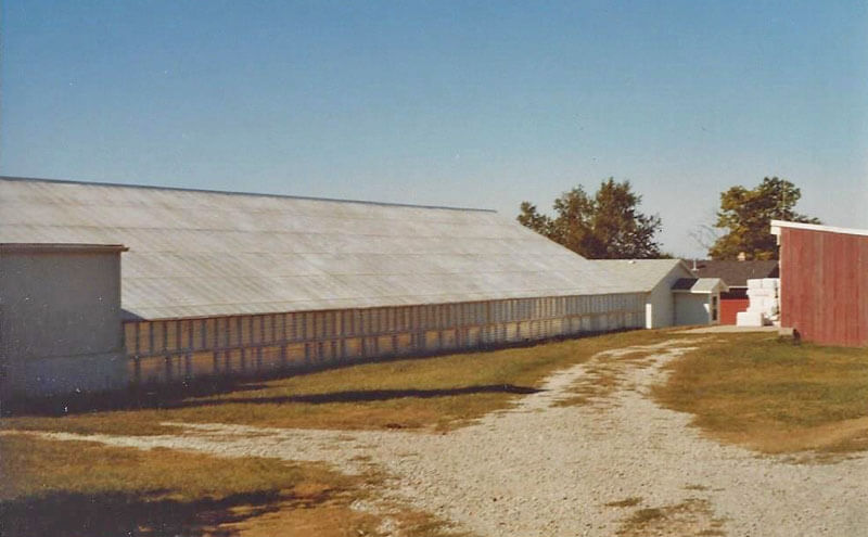 North side of GHS before new greenhouse addition.