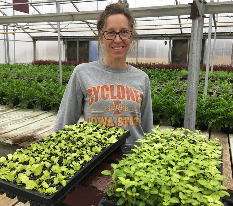 Shannon - Centerville Greenhouses.